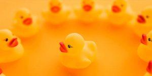 Zeven eigenschappen van effectief leiderschap - toolshero