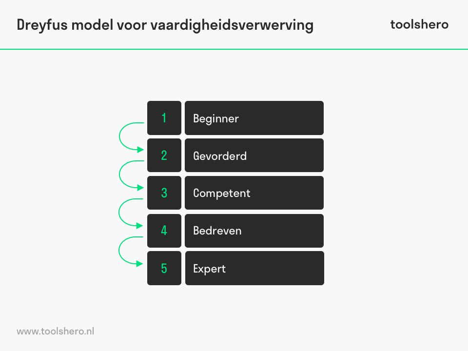 Dreyfus model voor vaardigheidsverwerving fasen - toolshero