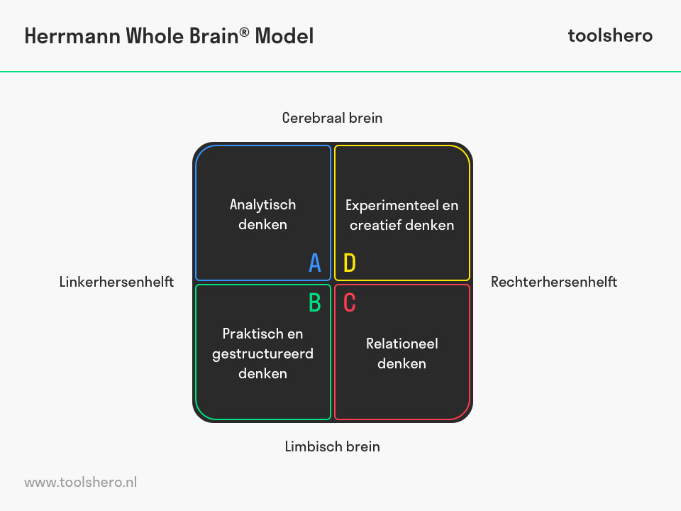 Herrmann Whole Brain Model HBDI model - toolshero