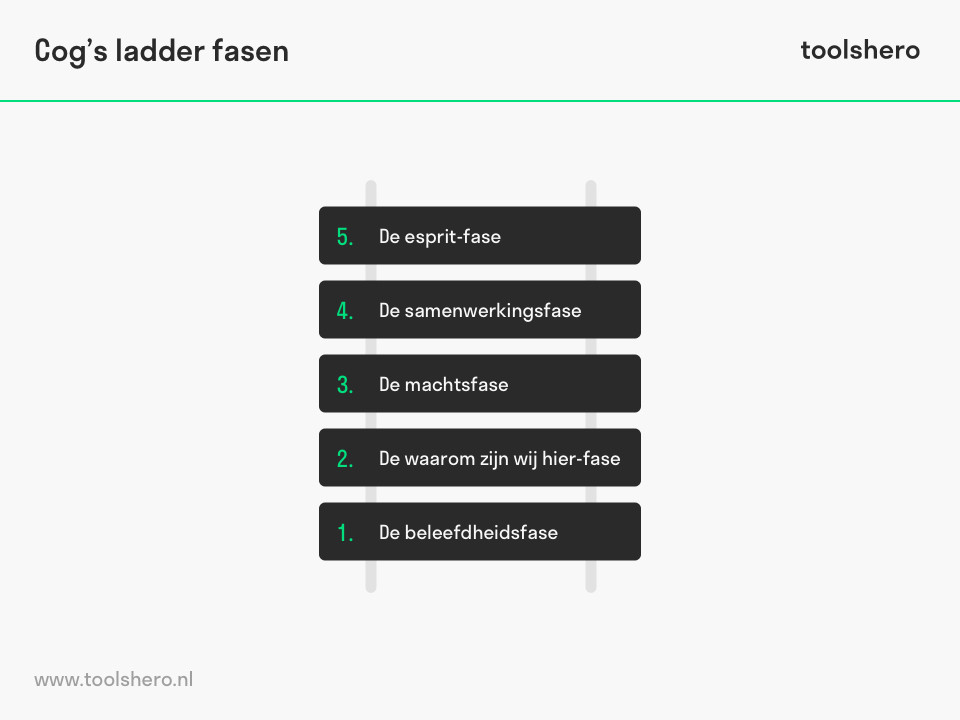Cog's ladder model fasen - toolshero
